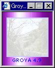 Groya